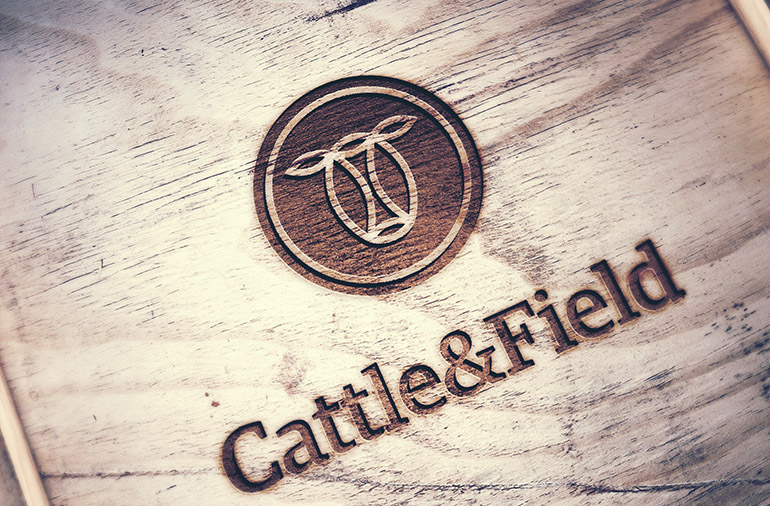 Cattle & Field-1